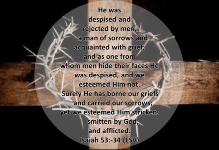 Isaiah 53:3-4, ESV
