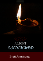 A Light Undimmed cover art